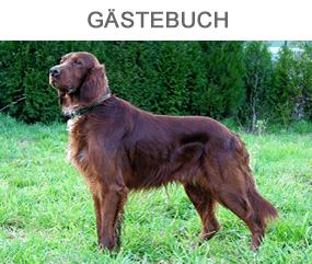 Gästebuch Hundewald Harz