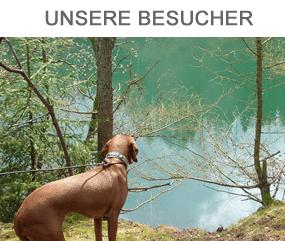 Hundewald Harz - Unsere Besucher